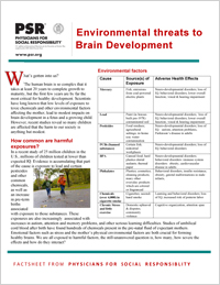 Environmental Threats to Brain Development